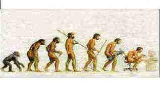 http://www.cs.mcgill.ca/~bmaniy/images/human_evolution.jpg